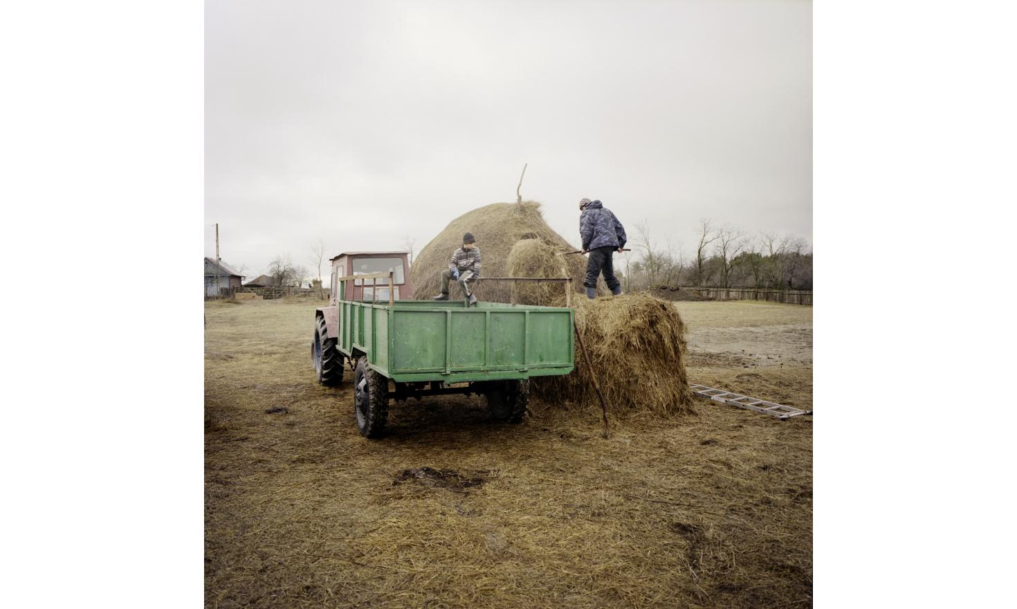 In Rosetti village, young people are loading hay.
